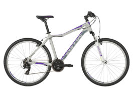 VANITY 10 Purple Grey  27.5″